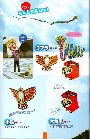 kite-book8